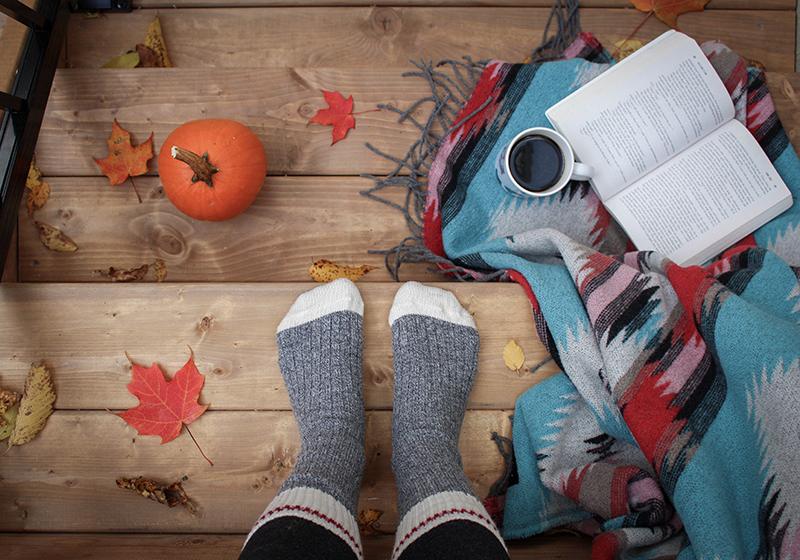cubierta de otoño 1