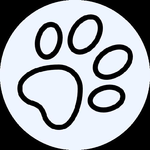Animais de estimação 1