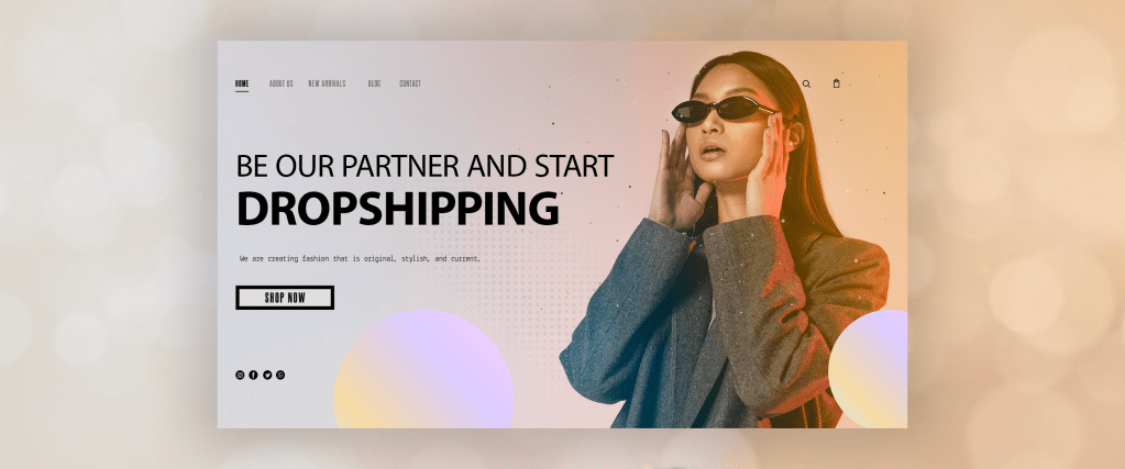 supplier page for dropshipping