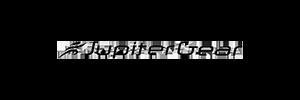 jupiter gear logo